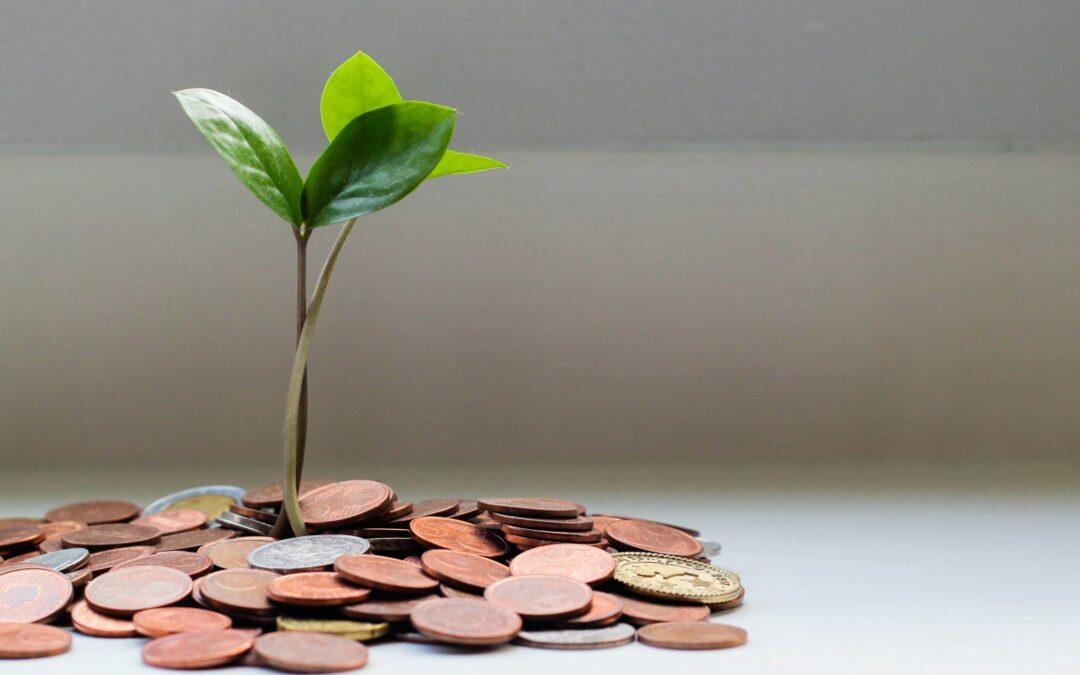 De skjulte omkostninger – Afledningsafgift – Spildevandsafgift…